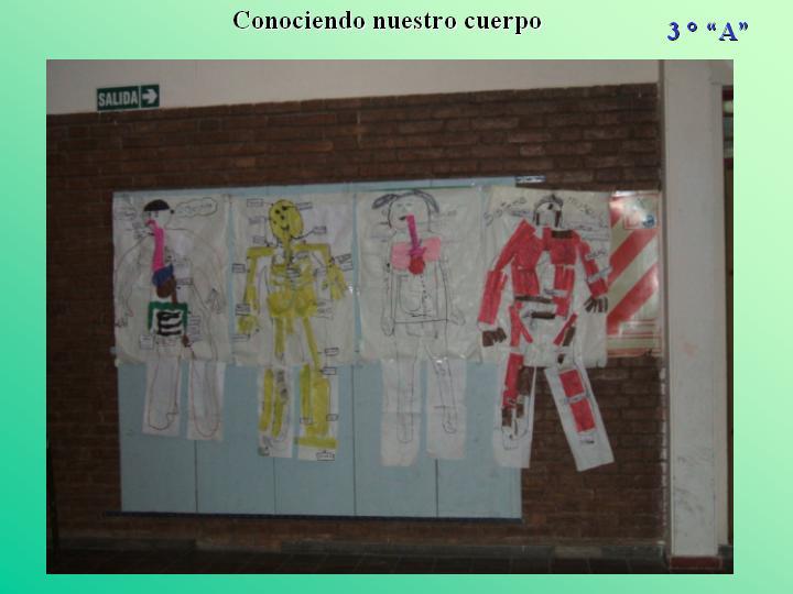 Maquetas realizadas por los alumnos de 3 °