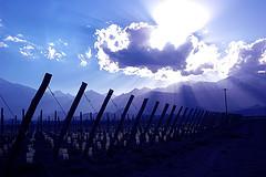 Conociendo lugares de Mendoza: Atardecer en Tupungato