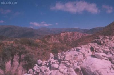 En la Colonia de Papagayos : Exploradores por un día.....